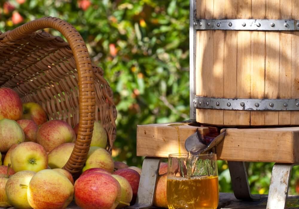 Prächtig Apfelsaft selber machen | Entsafter und Saftpressen im Test @MD_43